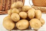 马铃薯小叶病防治方法