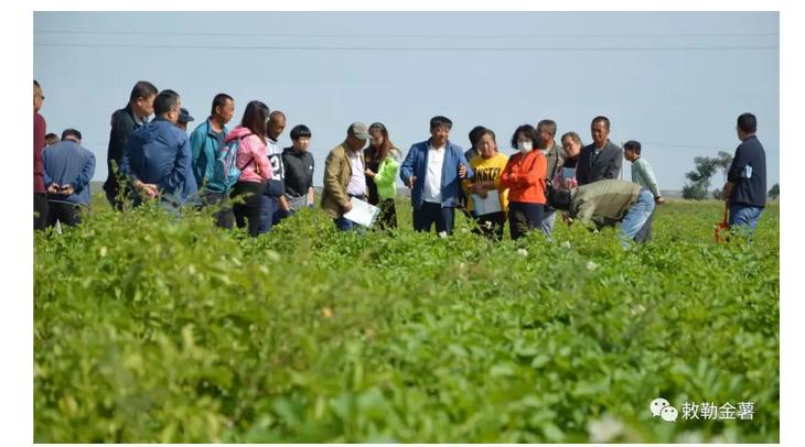包头市农牧民专业合作社达到2077个